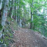 Wegverlauf Richtung Steyersbergerreith