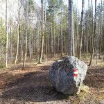 Bei diesem Stein zweigt unser Weg von der Forststraße ab