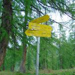 Bei diesem Schild wandern wir nicht geradeausweiter, sondern biegen nach rechts ab Richtung Reidling