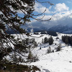 Einige schöne Eindrücke der Winterlandschaft