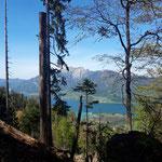 Blick auf den Wolfgangsee und den Schafberg