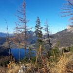 Blick auf den Altausseer See und den Loser