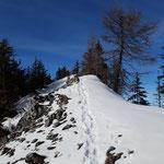 Diesen Weg ging es dann weiter zum Gipfel