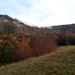 Die beiden Tagesziele sind hier schon zu erkennen - links das Dürre Eck, rechts der Gaisberg