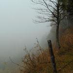Spektakuläre Nebelstimmung am Weg