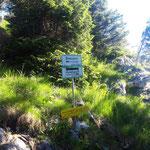 Kurz unterhalb des Mahdlgupf Gipfels gabeln sich die Wege zwischen Mahdlgupf und Brennerin