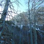 Immer näher kommt die eindrucksvolle Felswand des Traunsteins