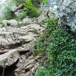 Erste Schlüsselstelle - dieser Fels ist zu überwinden