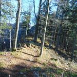 Am Waldsattel entlang geht es weiter Richtung Windhagkogel