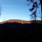 Am Adlerhorst Sattel bietet sich der Blick auf den Grünberg