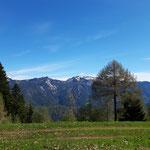 Blick auf der ersten Almwiese hin zum Sengsengebirge