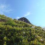 Der letzte Blick auf den Schuhflicker Gipfel