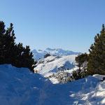 Gleich sind wir am Hochanger - die Hütte am Gipfel ist schon in Sicht