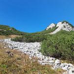 Durch den steilen Latschenwald und vorbei am Schotterfeld geht es näher Richtung Gipfel