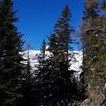 Blick vom Gipfel hin zum Warscheneck