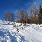 Wegverlauf - dieser ist im Winter klar zu erkennen