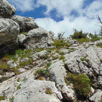 Letzte Felspassage am Weg zum Gipfel, die zu überkraxeln ist