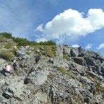 Letzter Anstieg zum Gamskogel Gipfel