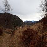 Am Rückweg sehen wir bis ins Sengsengebirge