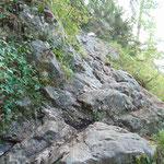 Einige leichte Felspassagen im Wald