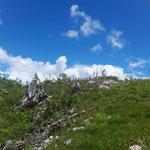 Plateau kurz vor dem Gipfel