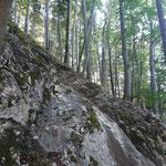 Erster Felsen mit seilgesicherter Passage nach dem weglosen Waldabschnitt