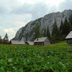 Vorbei an ein paar weiteren kleinen Hütten, dahinter wieder der Hochtausing