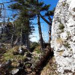 Zwischen Felsen, entlang eines idyllischen Kamms ...