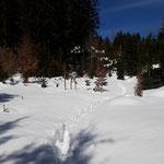 Wir stapfen durch teils tiefen Schnee