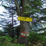 Abzweigung vom Hauptweg Richtung Bärenfeuchtmölbing