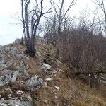 Wegverlauf - inzwischen schon entlang der Mauer (leider bei schlechterem Wetter)