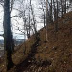 Dann über einen Waldweg, bevor der Aufstieg entlang der Mauer beginnt (leider bei schlechterem Wetter)