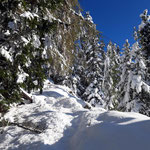 Der Weg ist trotz des Schnees relativ klar auszumachen