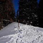 Gipfel des Gscheidriedels