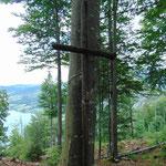 Schlichtes Gipfelkreuz, an einen Baum genagelt