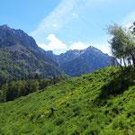 Blick auf Rettenkogel, Bergwerkskogel und Rinnkogel