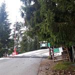 Beginn der Tour - die ersten etwa 15 Minuten nach dem Schranken geht es entlang einer Forststraße