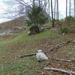 Ein paar kleine Steinmännchen weisen den Weg zum Einstieg