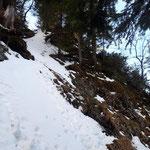 Sehr steiler Anstieg durch den Wald - hier durch eine Leiter erleichtert