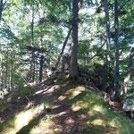 Idyllischer Waldpfad am Weg zum Maisenkögerl