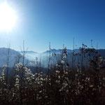 Auch das Sengsengebirge, sowie das Tote Gebirge zeigen sich von ihrer schönsten Seite