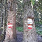 Eingang zum Rauriser Urwald