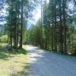 Gemütlicher Wegverlauf entlang der Forststraße