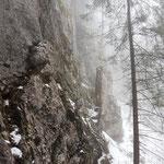 Weiter geht's entlang der Felswand