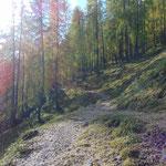Wunderschöner Wegverlauf von der Bärenalm zur Türkenkarscharte