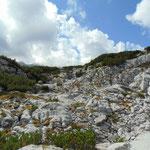 Unser Wegverlauf über die Felsen