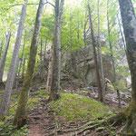 Felsformationen entlang des Steiges