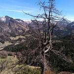 Blick vom Gipfel in Richtung Falkenmauer