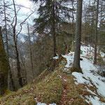 Wegverlauf über den Waldrücken
