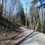 Wegverlauf der Forststraße